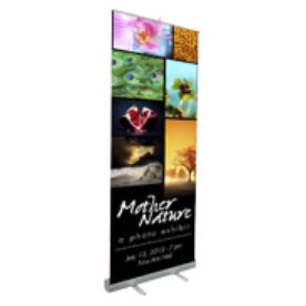 19 pull up banner